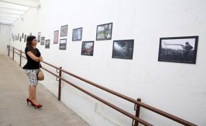 Exposição fotográfica, imagens afixadas na parede, uma mulher as admira